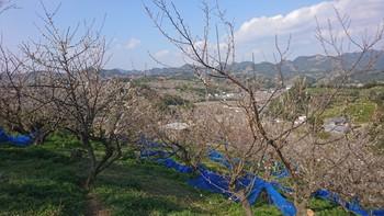 PicsArt_02-06-12.34.07.jpg