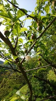 PicsArt_04-19-08.09.41.jpg