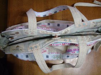 bag100222b.jpg